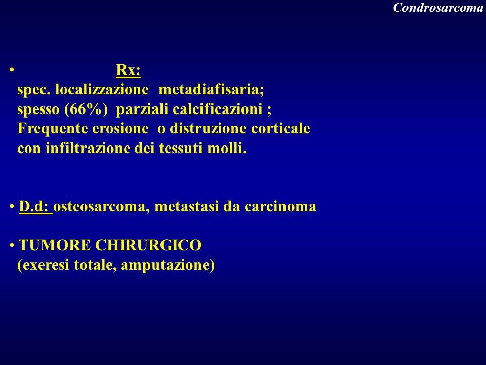 spec. localizzazione metadiafisaria;