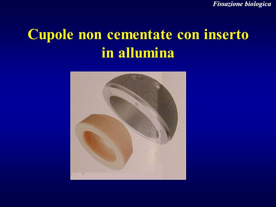 Cupole non cementate con inserto in allumina