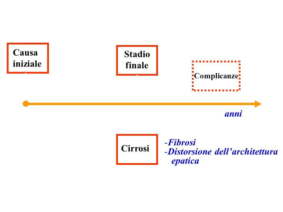 ● Causa Stadio iniziale finale anni Fibrosi Cirrosi