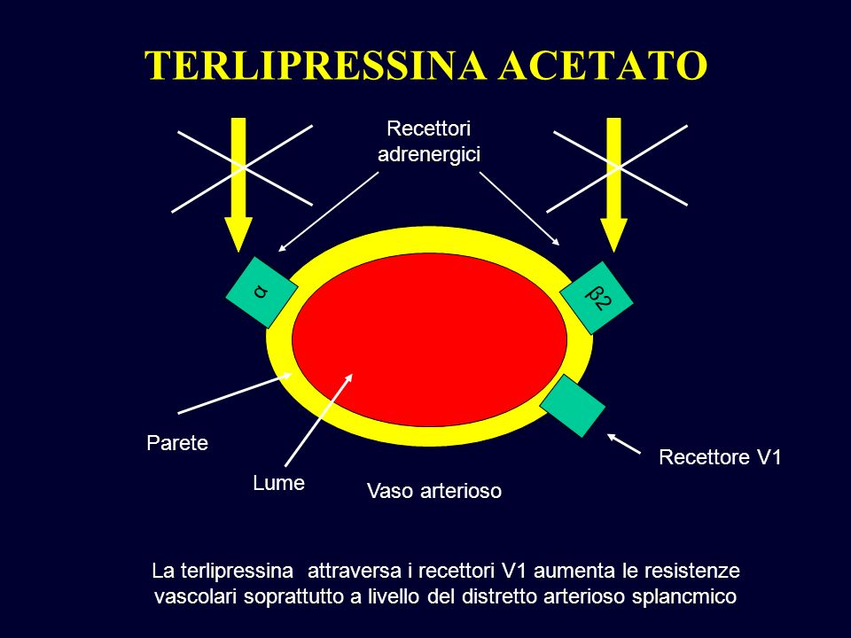 TERLIPRESSINA ACETATO