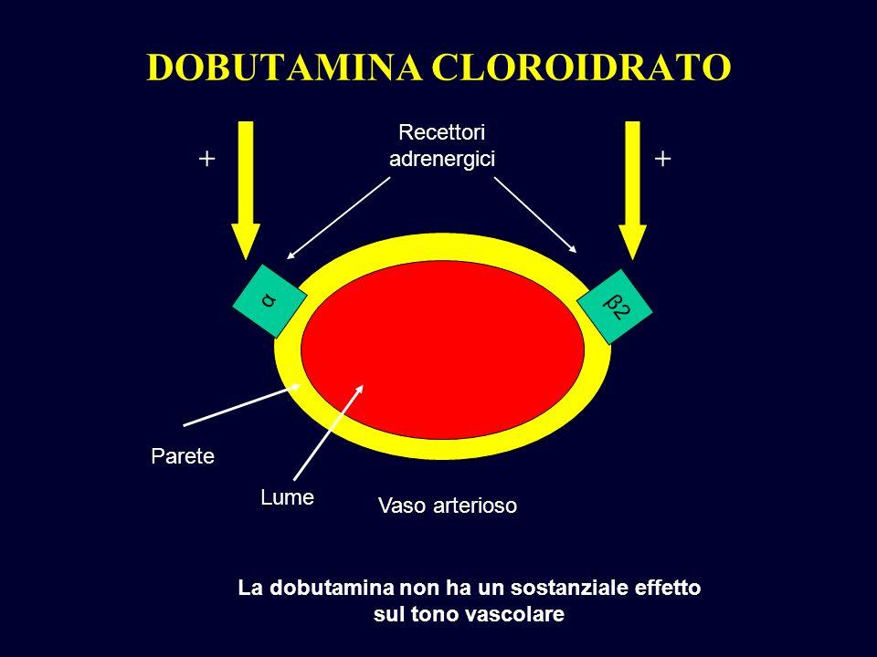 DOBUTAMINA CLOROIDRATO