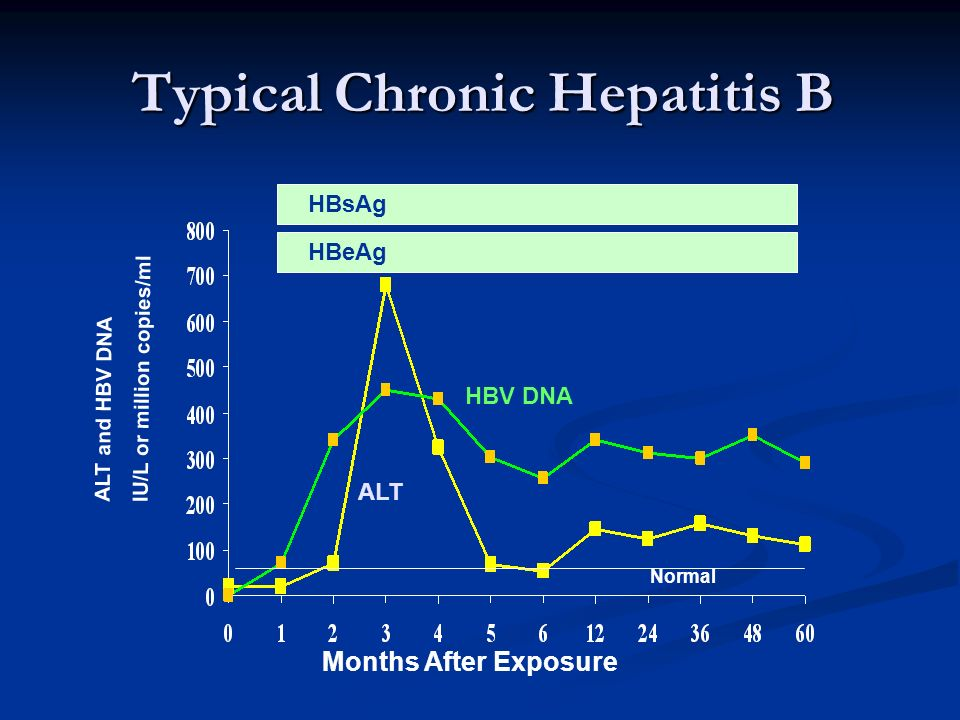 Typical Chronic Hepatitis B
