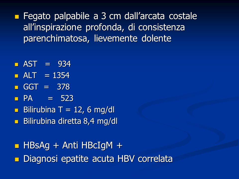 Diagnosi epatite acuta HBV correlata
