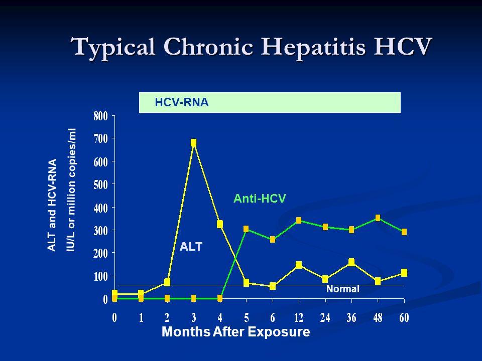 Typical Chronic Hepatitis HCV
