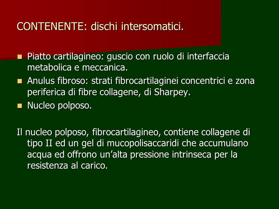 CONTENENTE: dischi intersomatici.