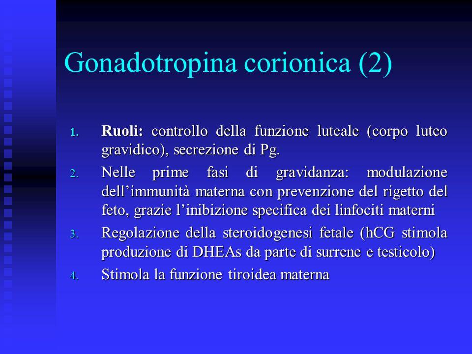Gonadotropina corionica (2)