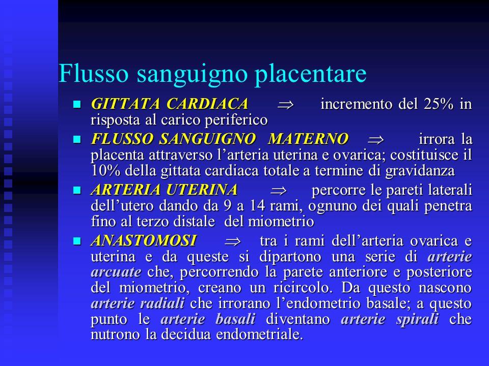 Flusso sanguigno placentare