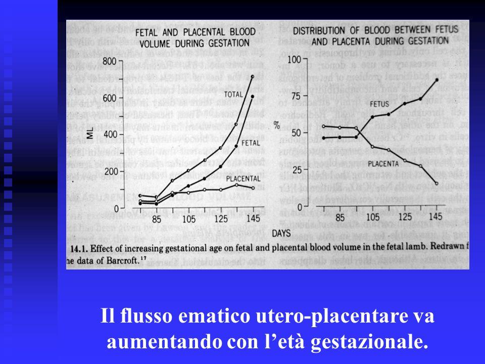 Il flusso ematico utero-placentare va aumentando con l'età gestazionale.
