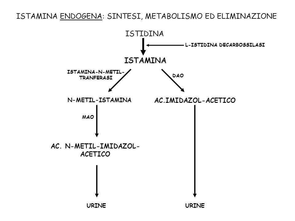 ISTAMINA-N-METIL-TRANFERASI