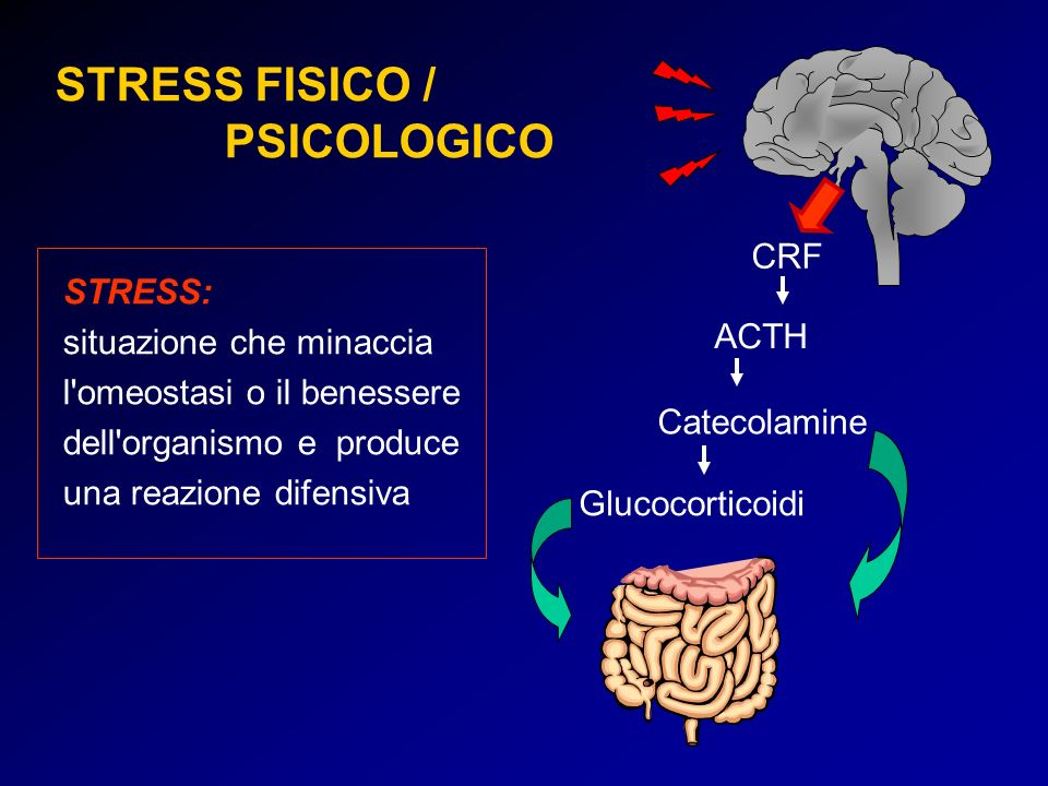 STRESS FISICO / PSICOLOGICO CRF STRESS: