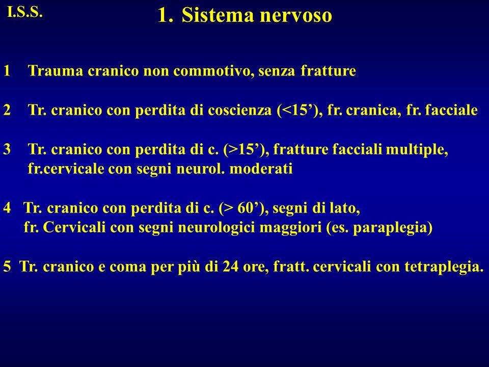 Sistema nervoso I.S.S. Trauma cranico non commotivo, senza fratture