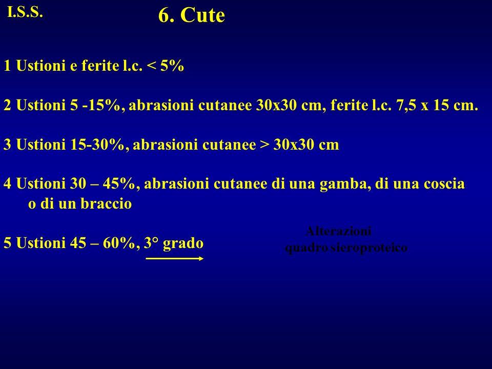 6. Cute I.S.S. 1 Ustioni e ferite l.c. < 5%