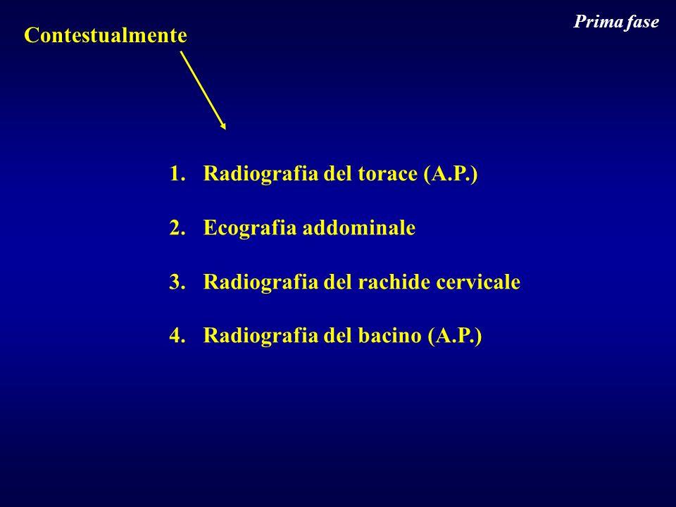 Radiografia del torace (A.P.) Ecografia addominale