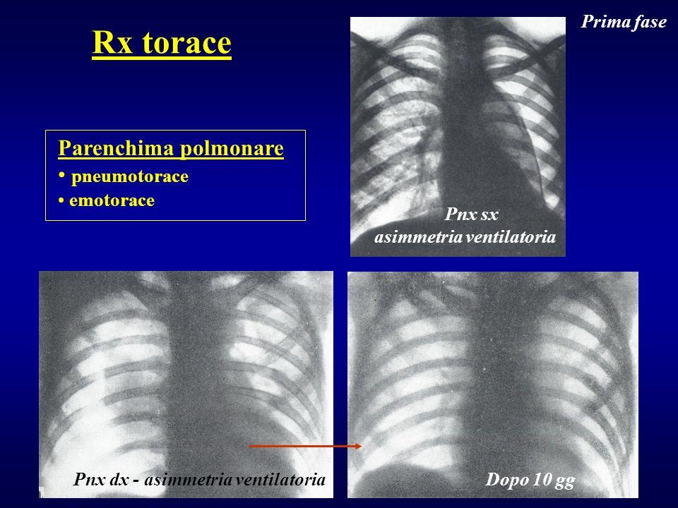 Rx torace Parenchima polmonare pneumotorace Prima fase emotorace