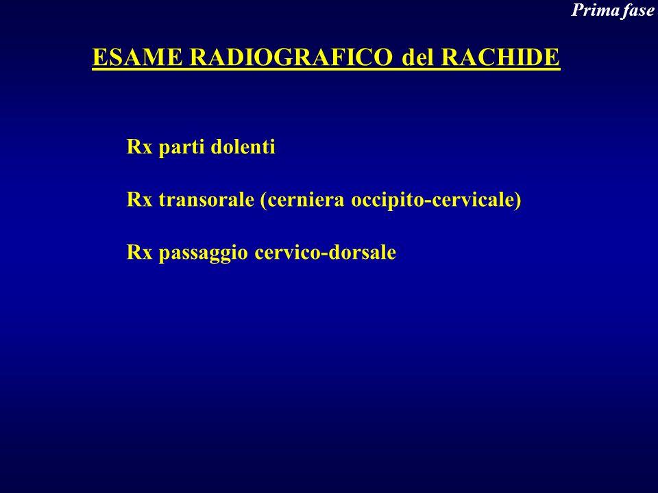 ESAME RADIOGRAFICO del RACHIDE
