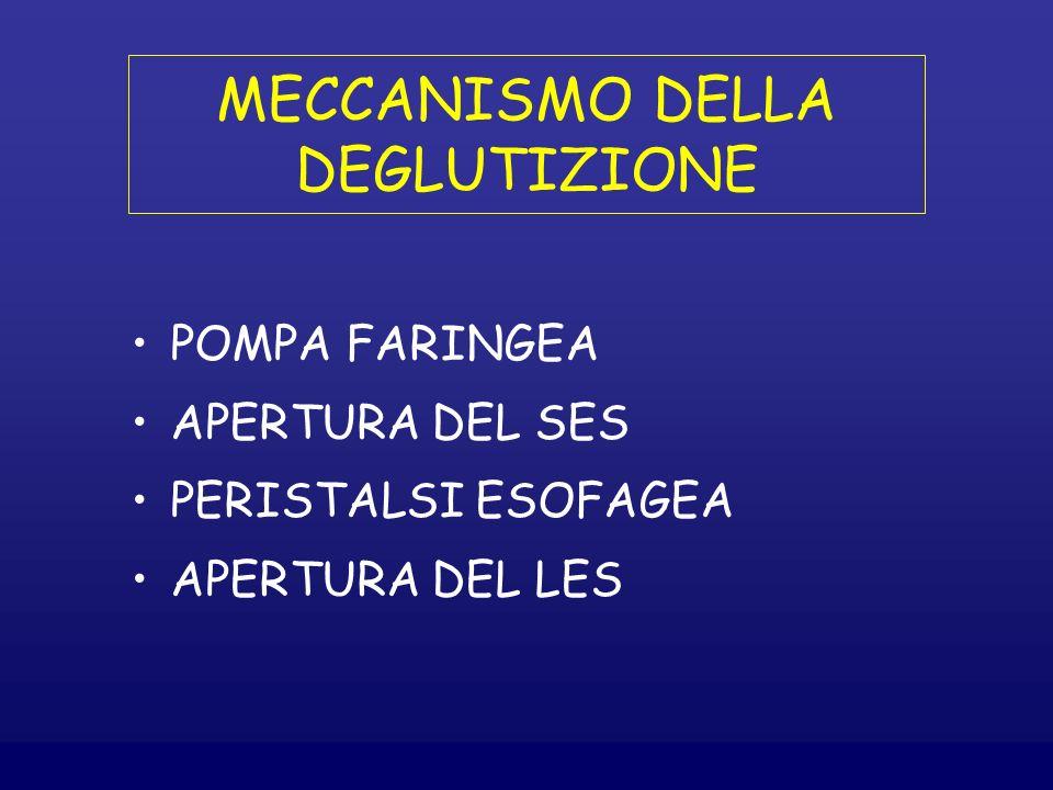 MECCANISMO DELLA DEGLUTIZIONE