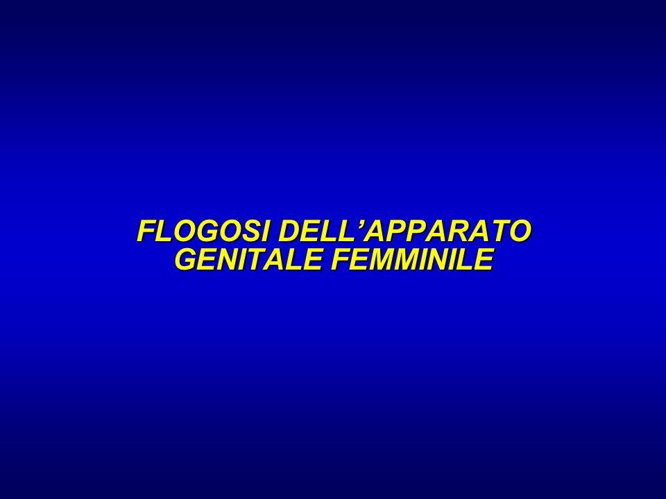 FLOGOSI DELL'APPARATO GENITALE FEMMINILE