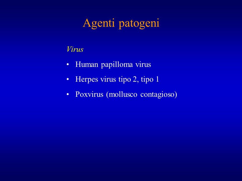 Agenti patogeni Virus Human papilloma virus