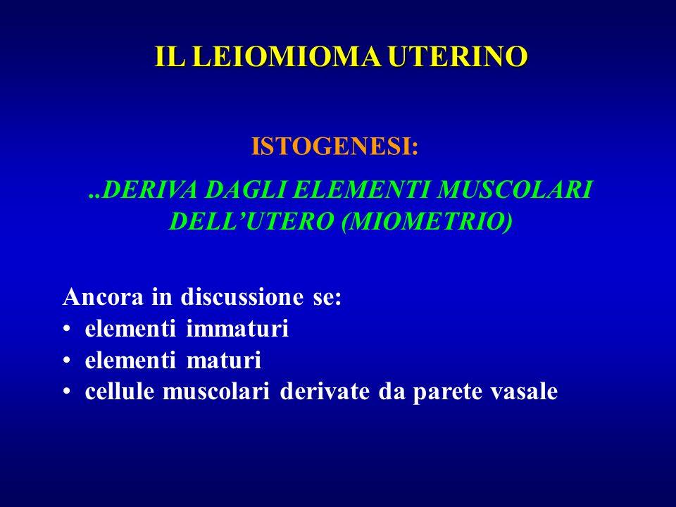 ..DERIVA DAGLI ELEMENTI MUSCOLARI DELL'UTERO (MIOMETRIO)