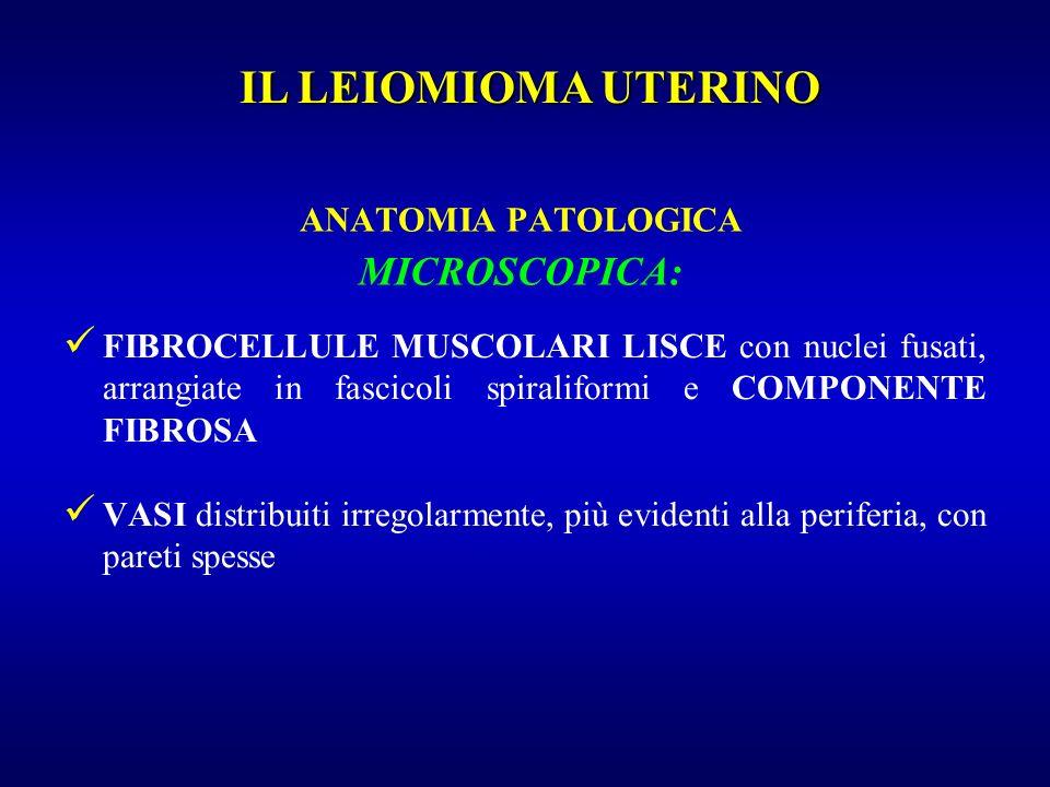 ANATOMIA PATOLOGICA MICROSCOPICA: