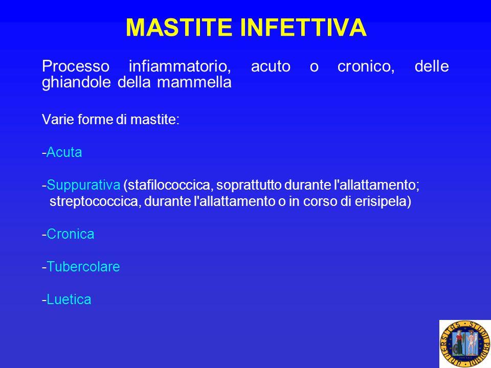 MASTITE INFETTIVA Processo infiammatorio, acuto o cronico, delle ghiandole della mammella. Varie forme di mastite: