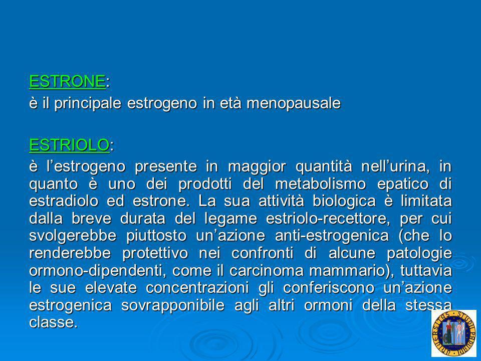 ESTRONE: è il principale estrogeno in età menopausale. ESTRIOLO: