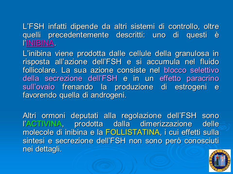 L'FSH infatti dipende da altri sistemi di controllo, oltre quelli precedentemente descritti: uno di questi è l'INIBINA.