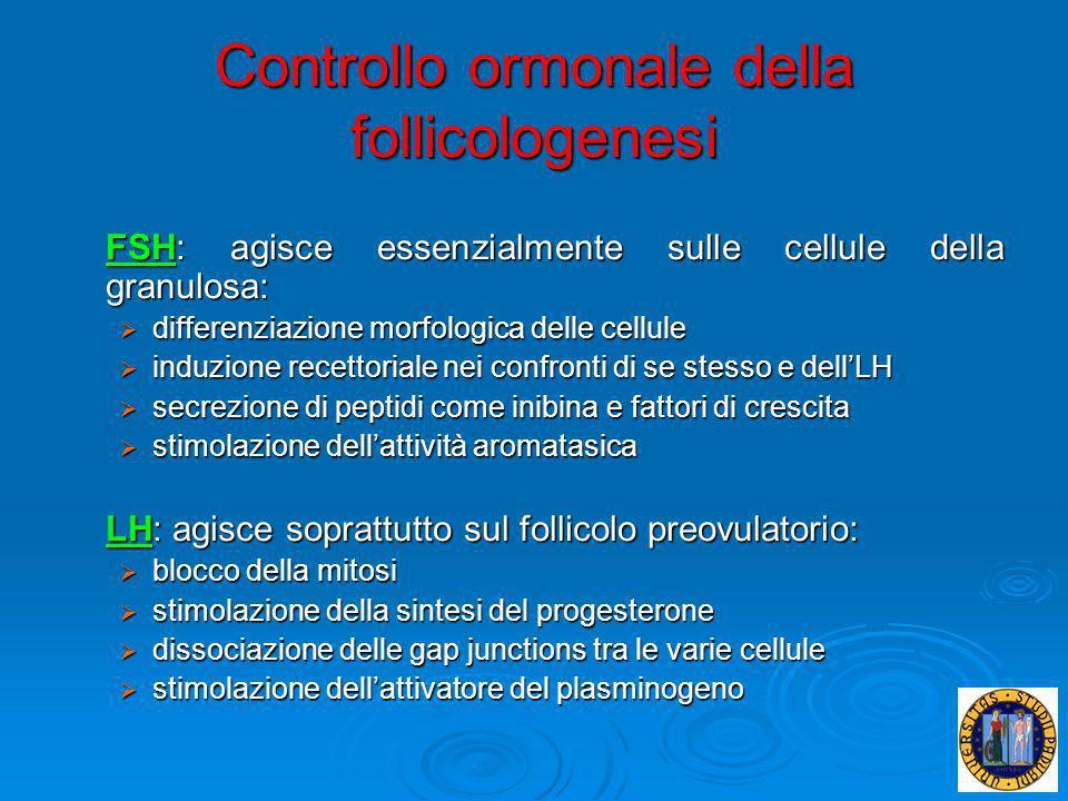 Controllo ormonale della follicologenesi