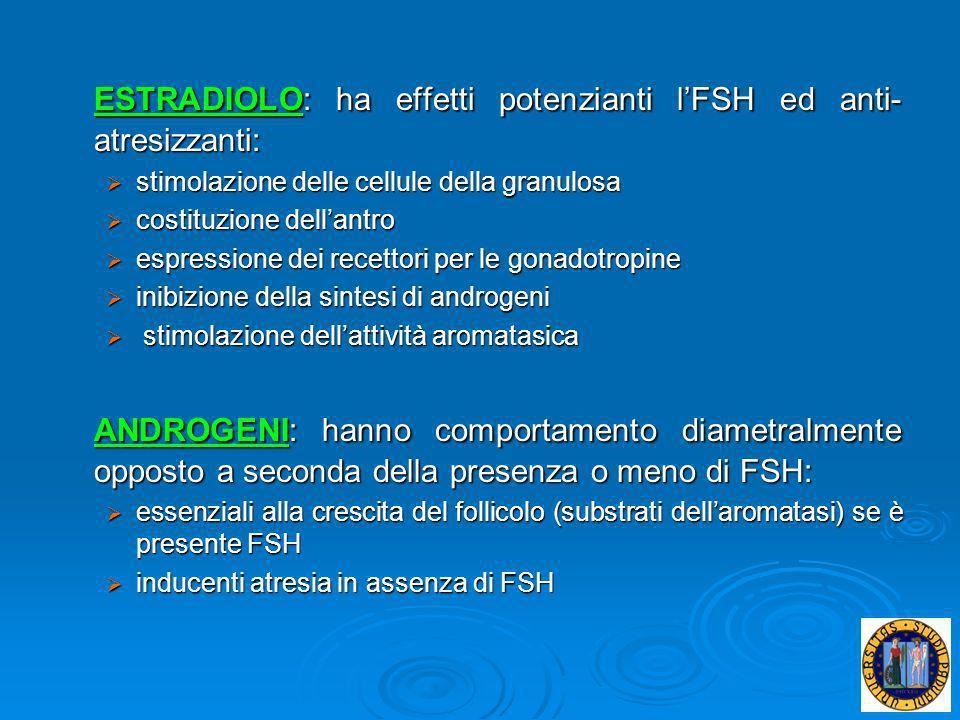 ESTRADIOLO: ha effetti potenzianti l'FSH ed anti-atresizzanti: