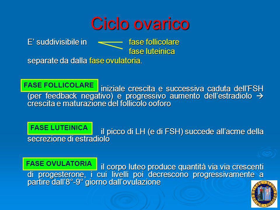 Ciclo ovarico E' suddivisibile in fase follicolare fase luteinica
