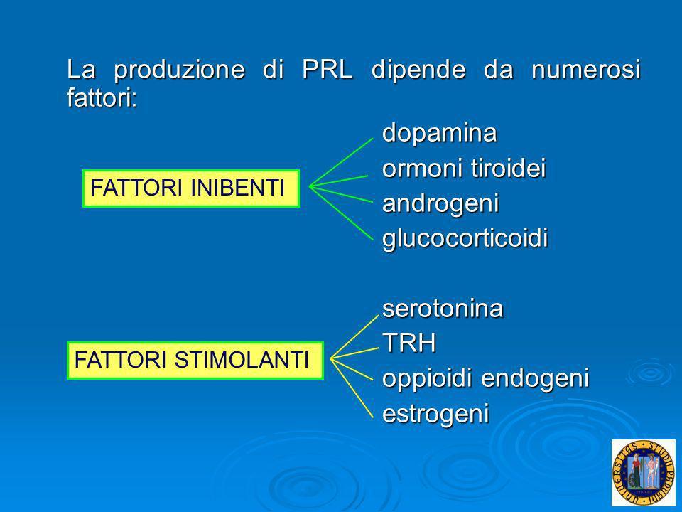 La produzione di PRL dipende da numerosi fattori: dopamina