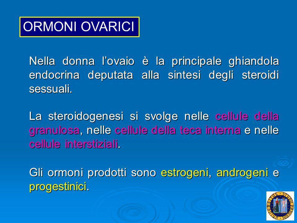 ORMONI OVARICINella donna l'ovaio è la principale ghiandola endocrina deputata alla sintesi degli steroidi sessuali.