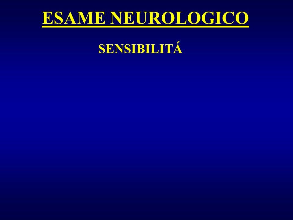 ESAME NEUROLOGICO SENSIBILITÁ