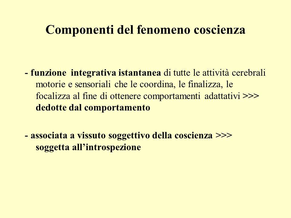 Componenti del fenomeno coscienza
