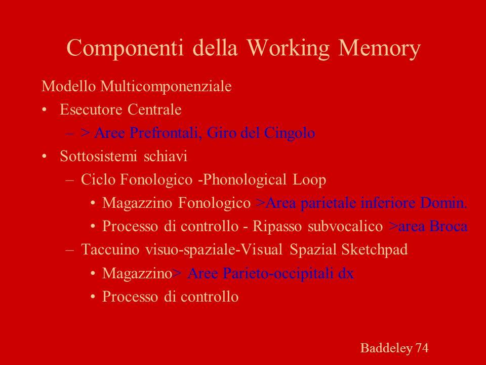 Componenti della Working Memory