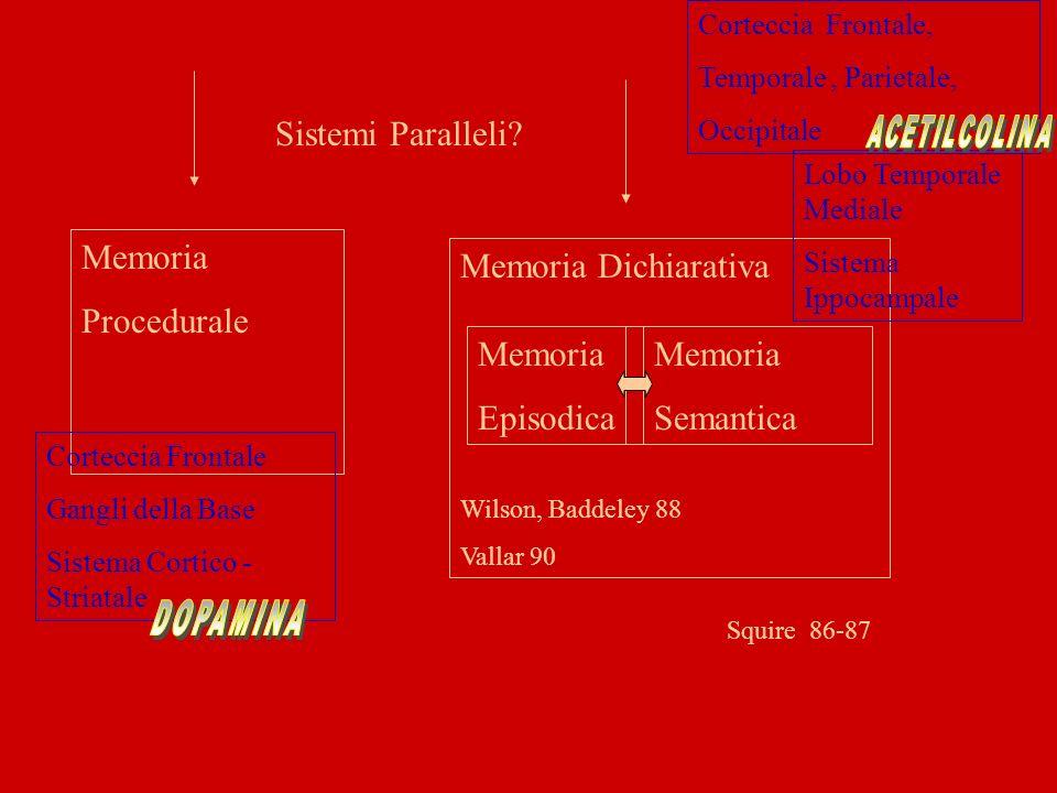 Sistemi Paralleli Memoria Procedurale Memoria Dichiarativa Memoria
