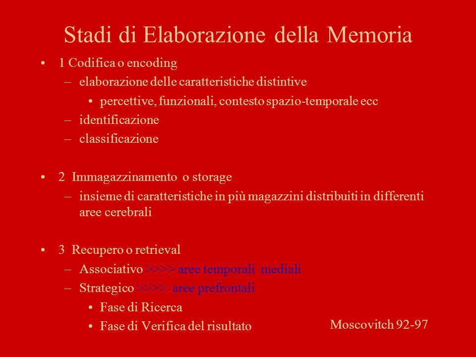 Stadi di Elaborazione della Memoria