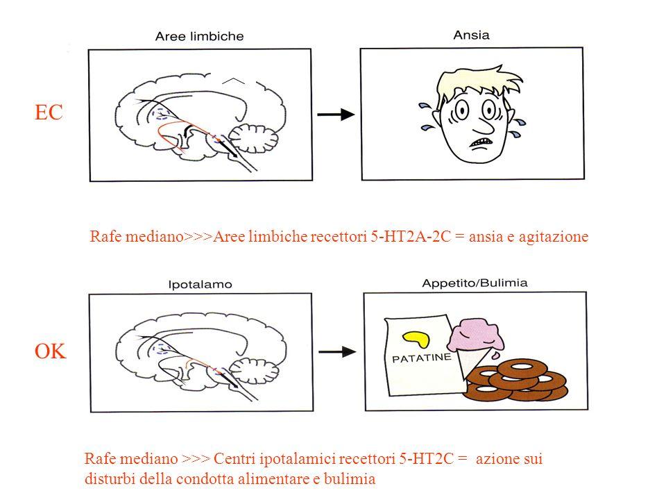 ECRafe mediano>>>Aree limbiche recettori 5-HT2A-2C = ansia e agitazione. OK.