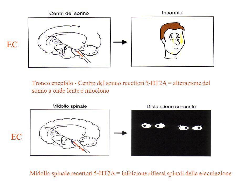 ECTronco encefalo - Centro del sonno recettori 5-HT2A = alterazione del sonno a onde lente e mioclono.