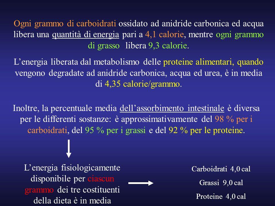 Ogni grammo di carboidrati ossidato ad anidride carbonica ed acqua libera una quantità di energia pari a 4,1 calorie, mentre ogni grammo di grasso libera 9,3 calorie.