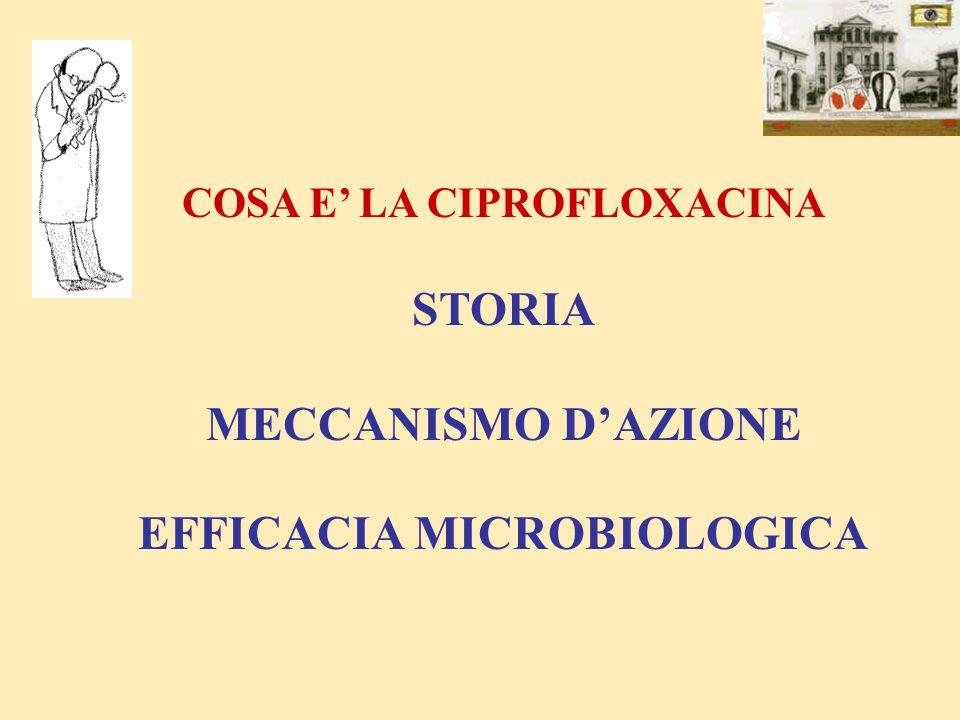 COSA E' LA CIPROFLOXACINA EFFICACIA MICROBIOLOGICA