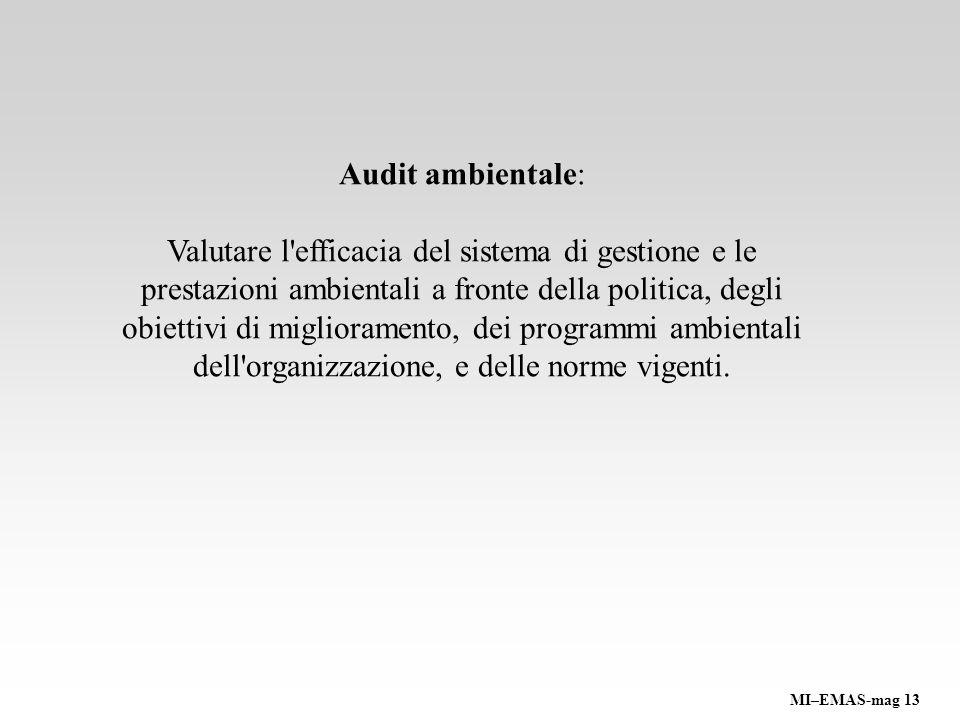Audit ambientale: