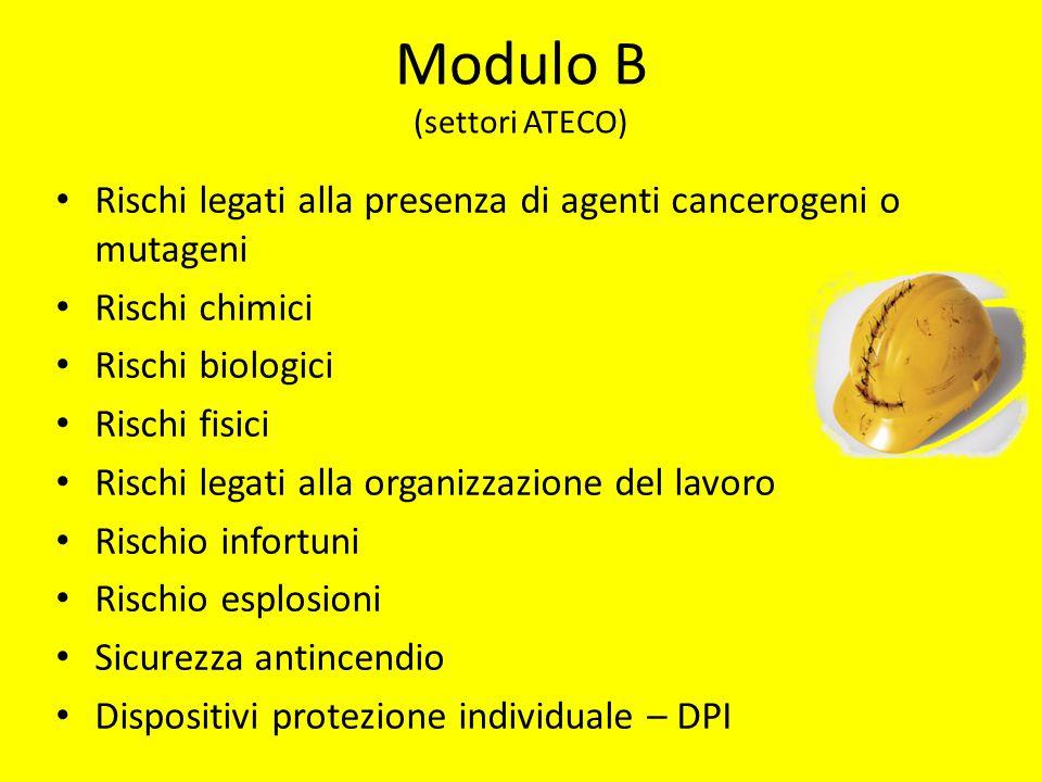 Modulo B (settori ATECO)