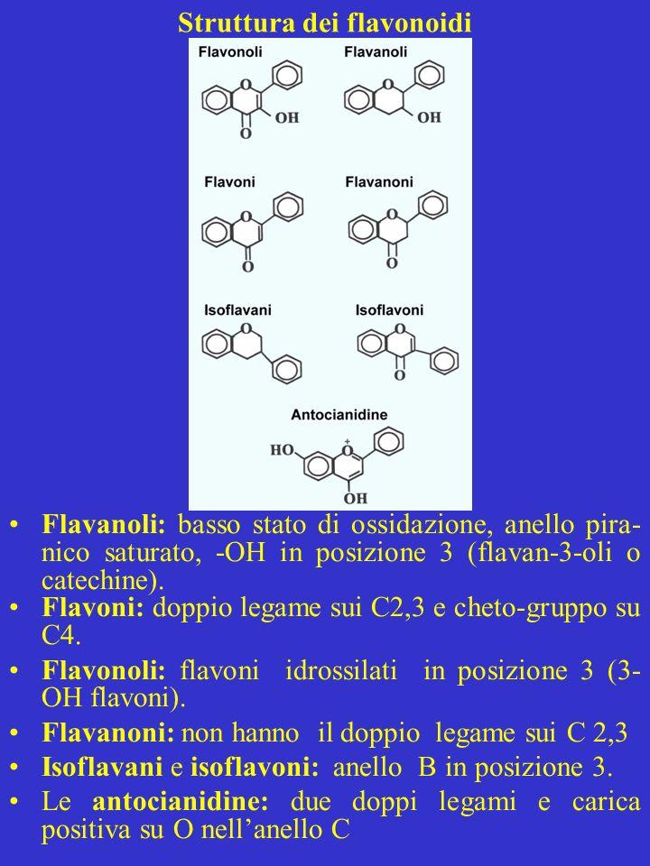 Struttura dei flavonoidi