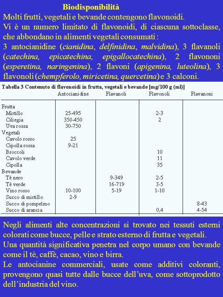 Biodisponibilità Molti frutti, vegetali e bevande contengono flavonoidi.