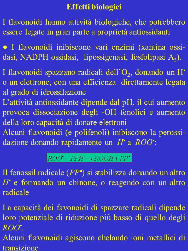 Effetti biologici I flavonoidi hanno attività biologiche, che potrebbero essere legate in gran parte a proprietà antiossidanti.
