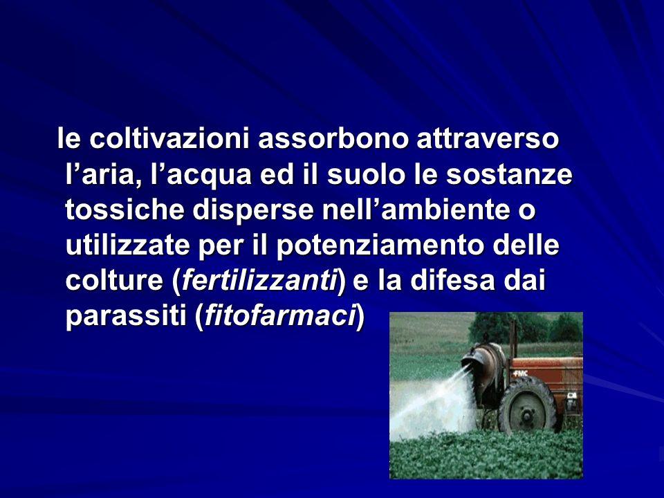 le coltivazioni assorbono attraverso l'aria, l'acqua ed il suolo le sostanze tossiche disperse nell'ambiente o utilizzate per il potenziamento delle colture (fertilizzanti) e la difesa dai parassiti (fitofarmaci)