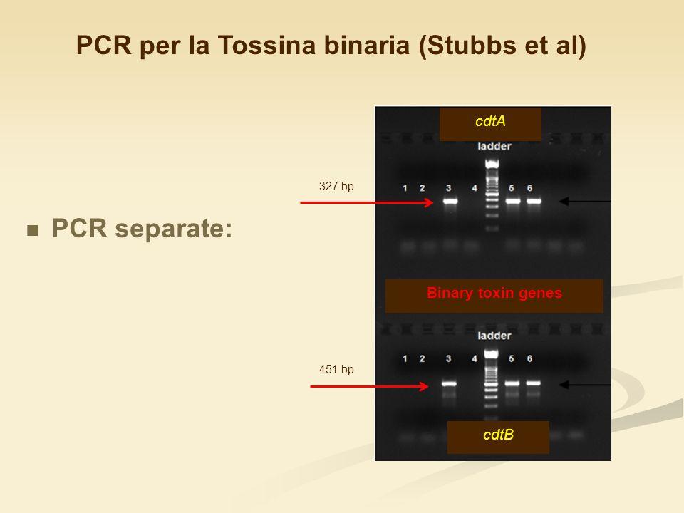 PCR per la Tossina binaria (Stubbs et al)