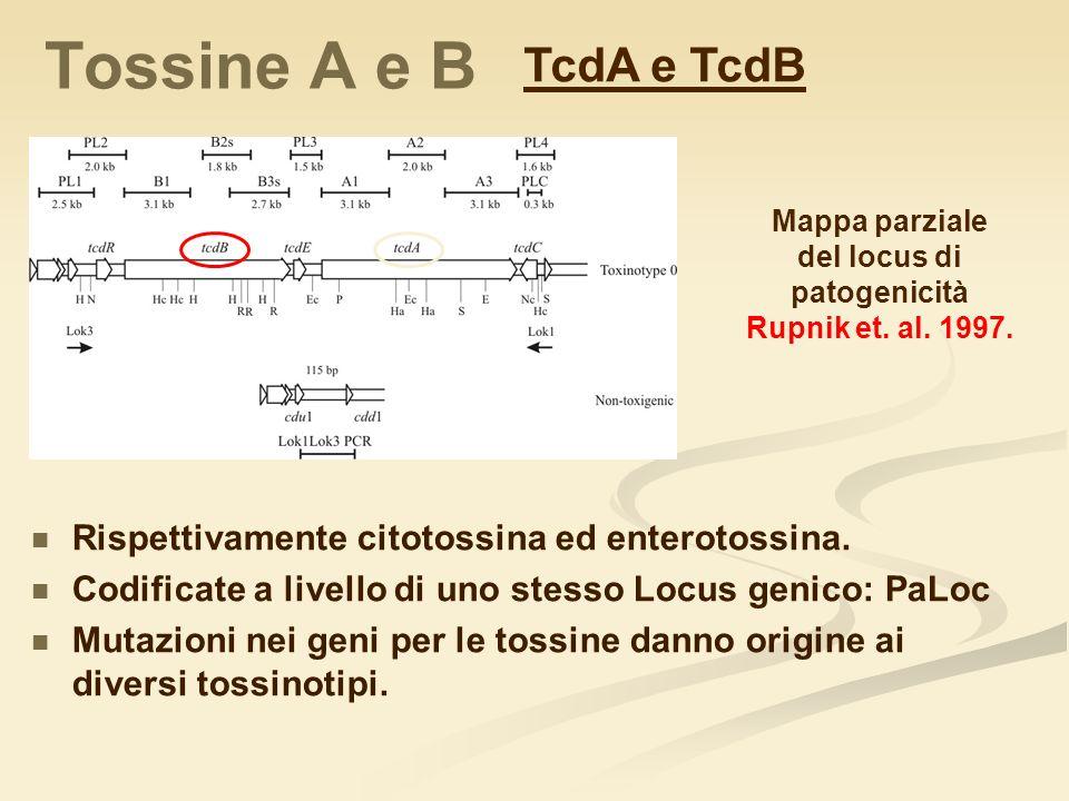 del locus di patogenicità
