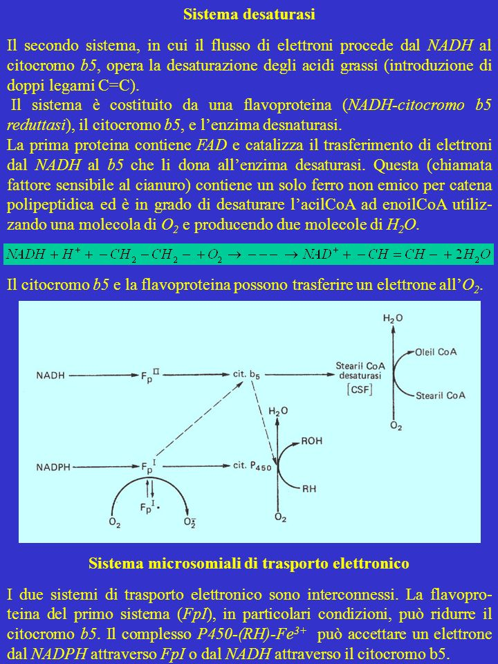 Sistema microsomiali di trasporto elettronico